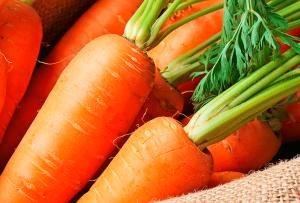 Морковът
